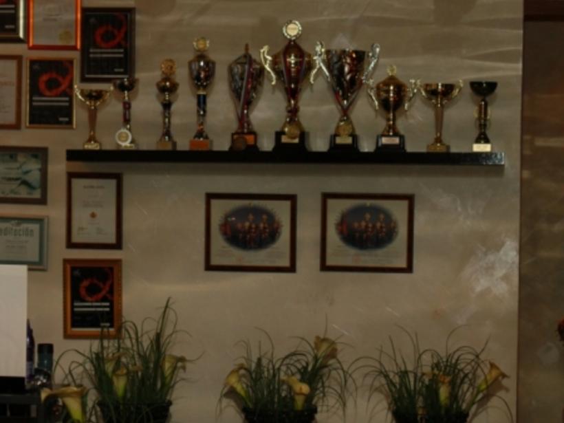 Награды и кубки мастеров салона