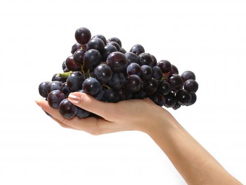 Винотерапия – одна из самых приятных и изысканных SPA-процедур. Секрет эффективности винотерапии кроется в уникальных природных особенностях винограда